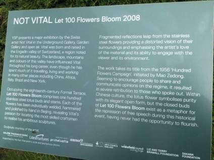flower-pettales-deatails-220916